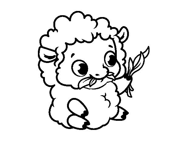 600x470 Baby Sheep Coloring Page