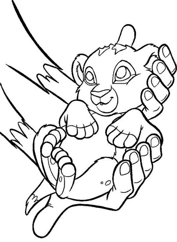 600x818 cute baby simba the lion king coloring page coloring pages for