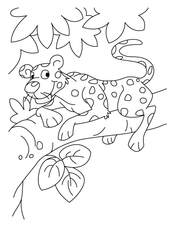 612x792 Baby Leopard Coloring Pages Download Free Baby Leopard Coloring