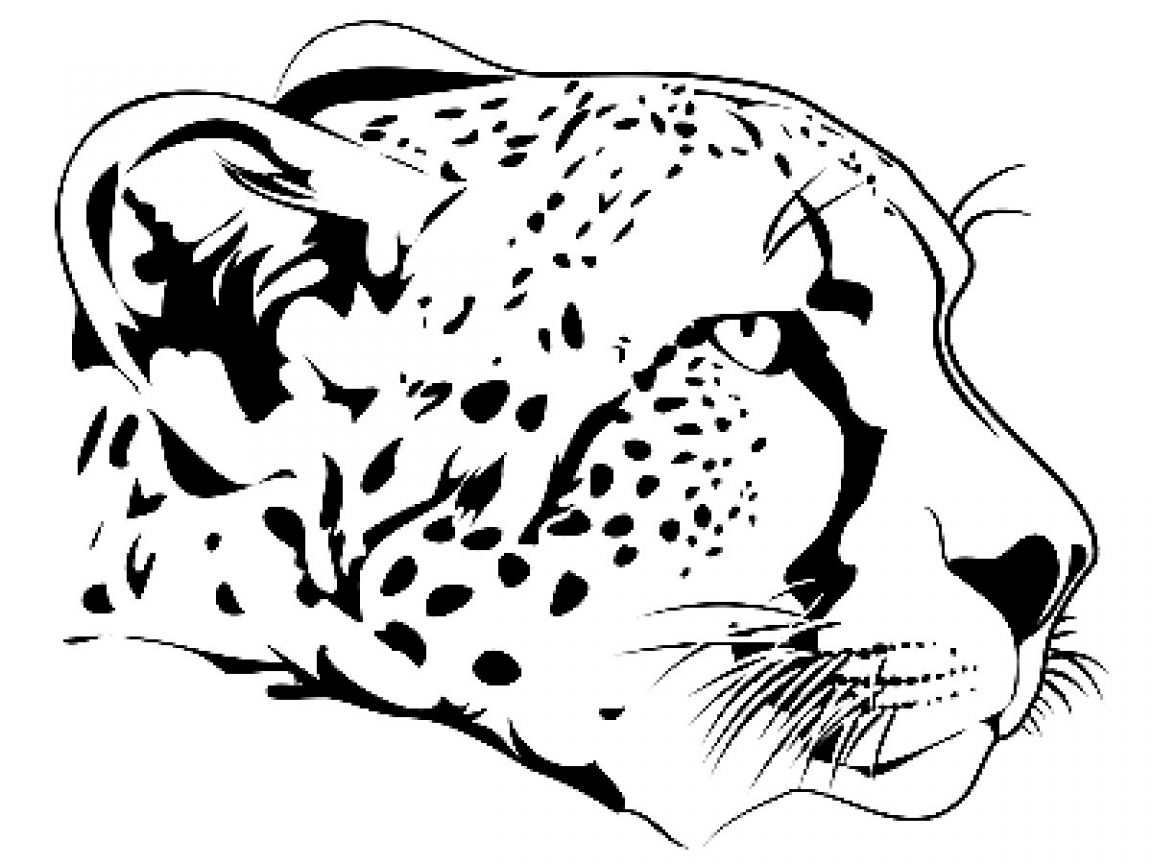 1152x864 Impressive Cheetah Pictures To Color Coloring Pages General Free