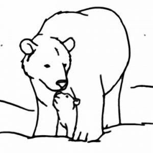 300x300 Polar Bear Baby Cute Drawing How To Draw A Polar Adult