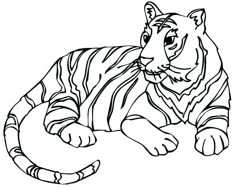 755x600 Baby Tigger Coloring Pages Cute Tiger Drawing Baby Margaret Tiger