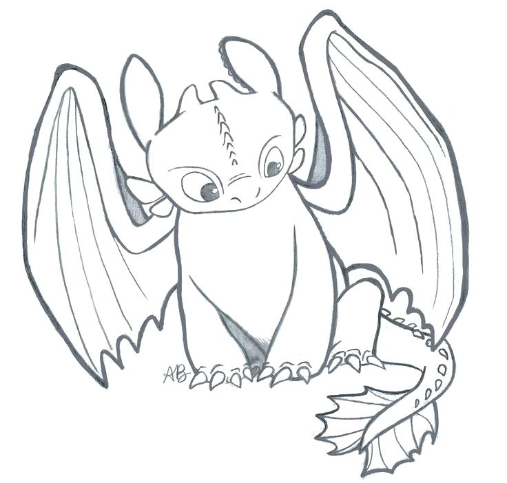 736x702 Classy Toothless Coloring Pages Print How To Train Your Dragon
