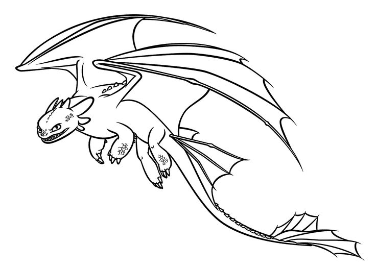 736x525 Toothless From How To Train Your Dragon. My Drawings