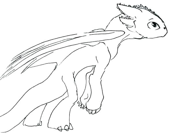 600x463 Toothless The Dragon Coloring Pages