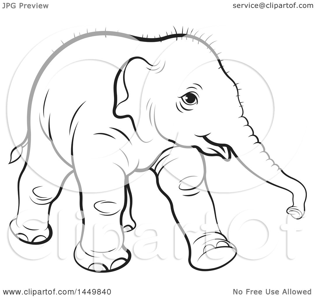 1080x1024 Clipart Graphic Of A Black And White Lineart Walking Baby Elephant