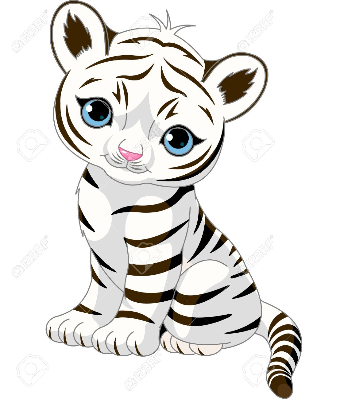 baby white tiger drawing at getdrawings com free for personal use rh getdrawings com