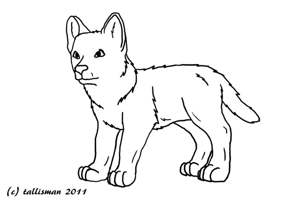 1024x680 Baby Wolves Coloring Pages Baby Wolf Coloring Sheets