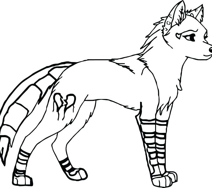 678x600 Coloring Pages Of Wolfs Attractive Baby Wolf Drawing Template