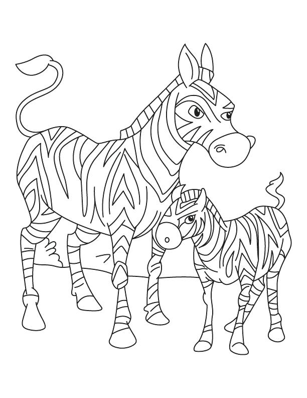 612x792 Beautiful Zebra Coloring Page Image Pages Furry Baby Zebras