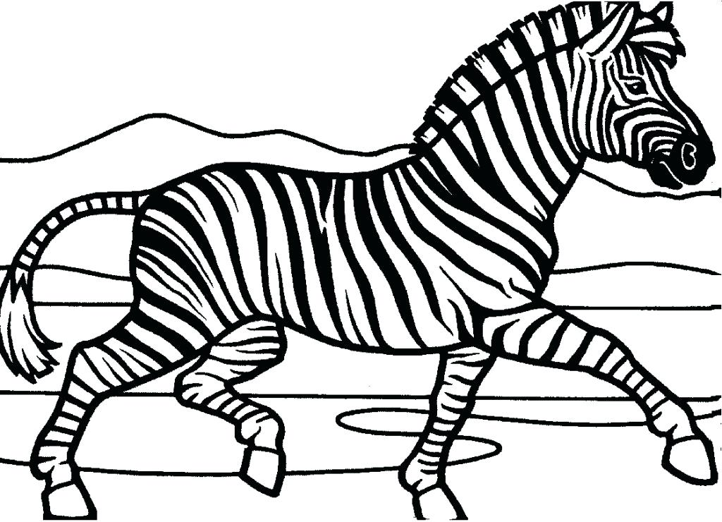 1024x740 Here Are Zebra Coloring Pages Images Zebra Coloring Pages Me