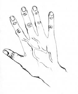 251x302 How To Draw Hands Step 7 Drawing Hand Drawn, Hand