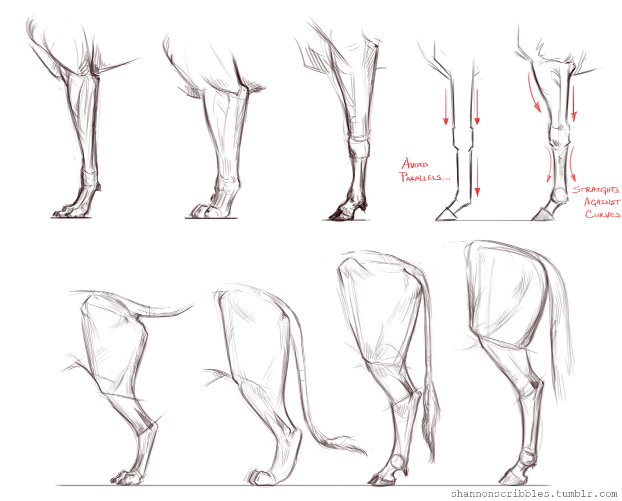 1280x1032 Just Horsing Around With Some Equine Heads. Uf Uf Drawing