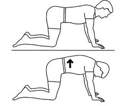 242x208 4 Stretches To Reduce Lower Back Pain