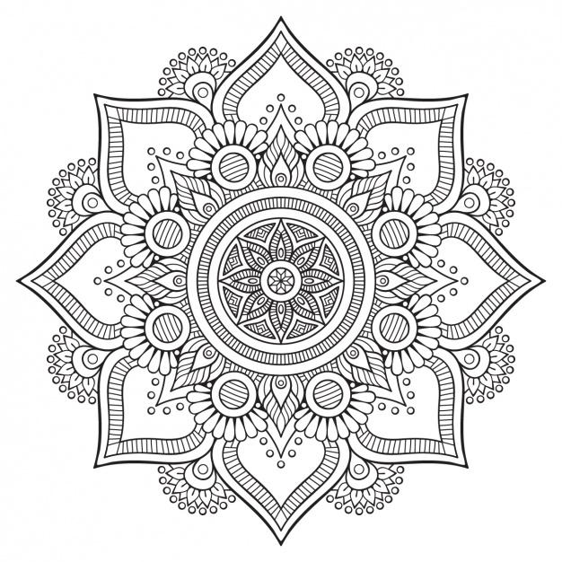 626x626 Floral Background Design Vector Free Download