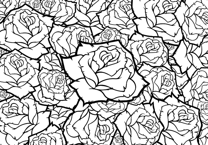 700x490 Rose Flower Vector Background Black And White