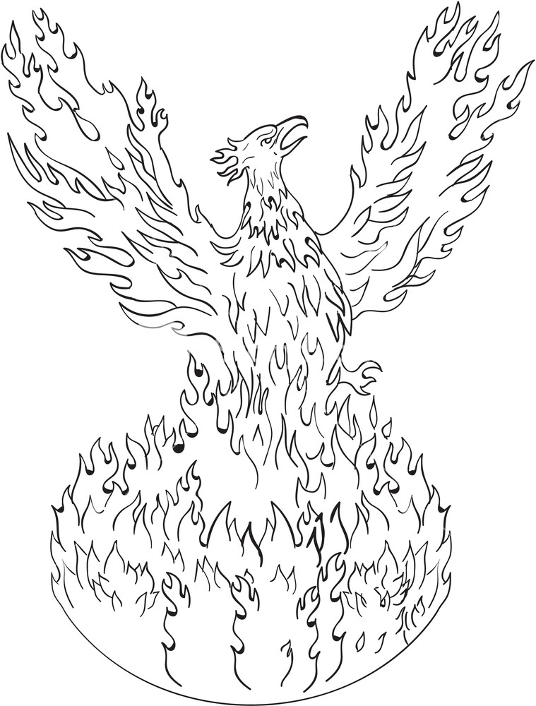 759x1000 Drawing Sketch Style Illustration Of A Phoenix Rising Up