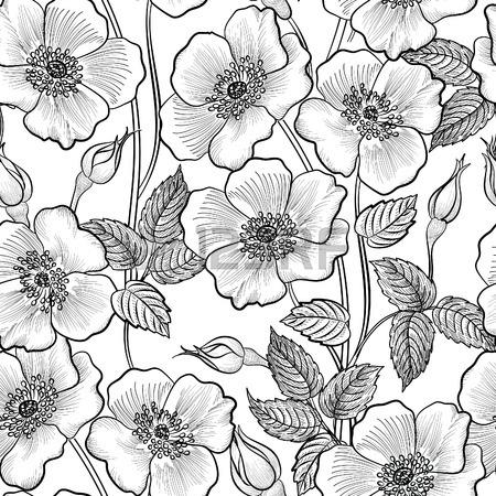 450x450 Floral Seamless Outline Sketch Pattern. Flower Background. Floral