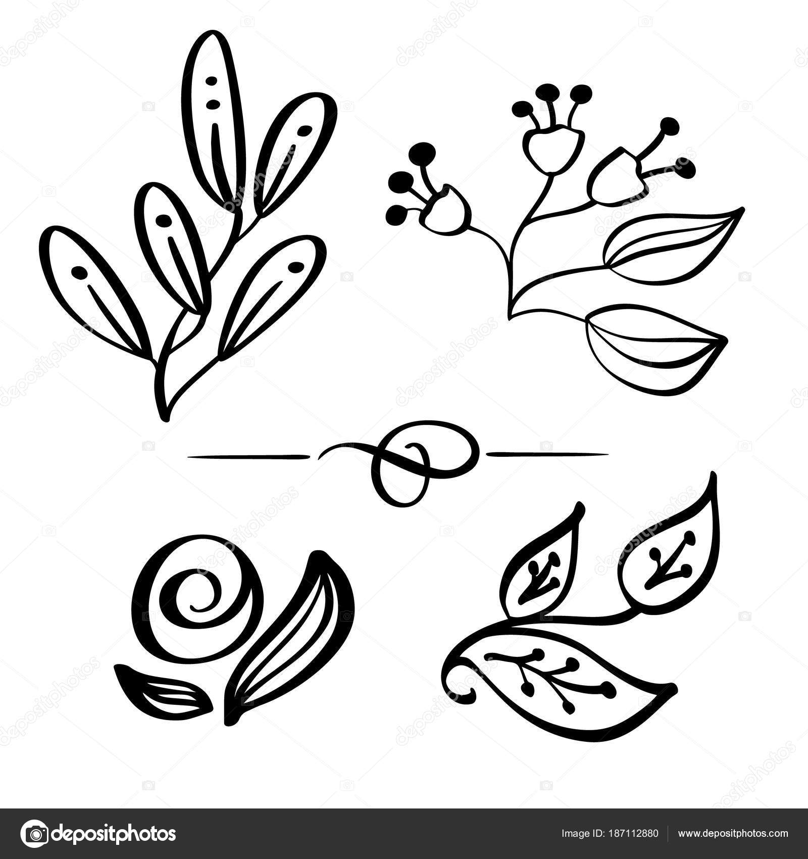 1600x1700 Set Hand Drawn Wild Flowers Branch Vector Drawing And Sketch