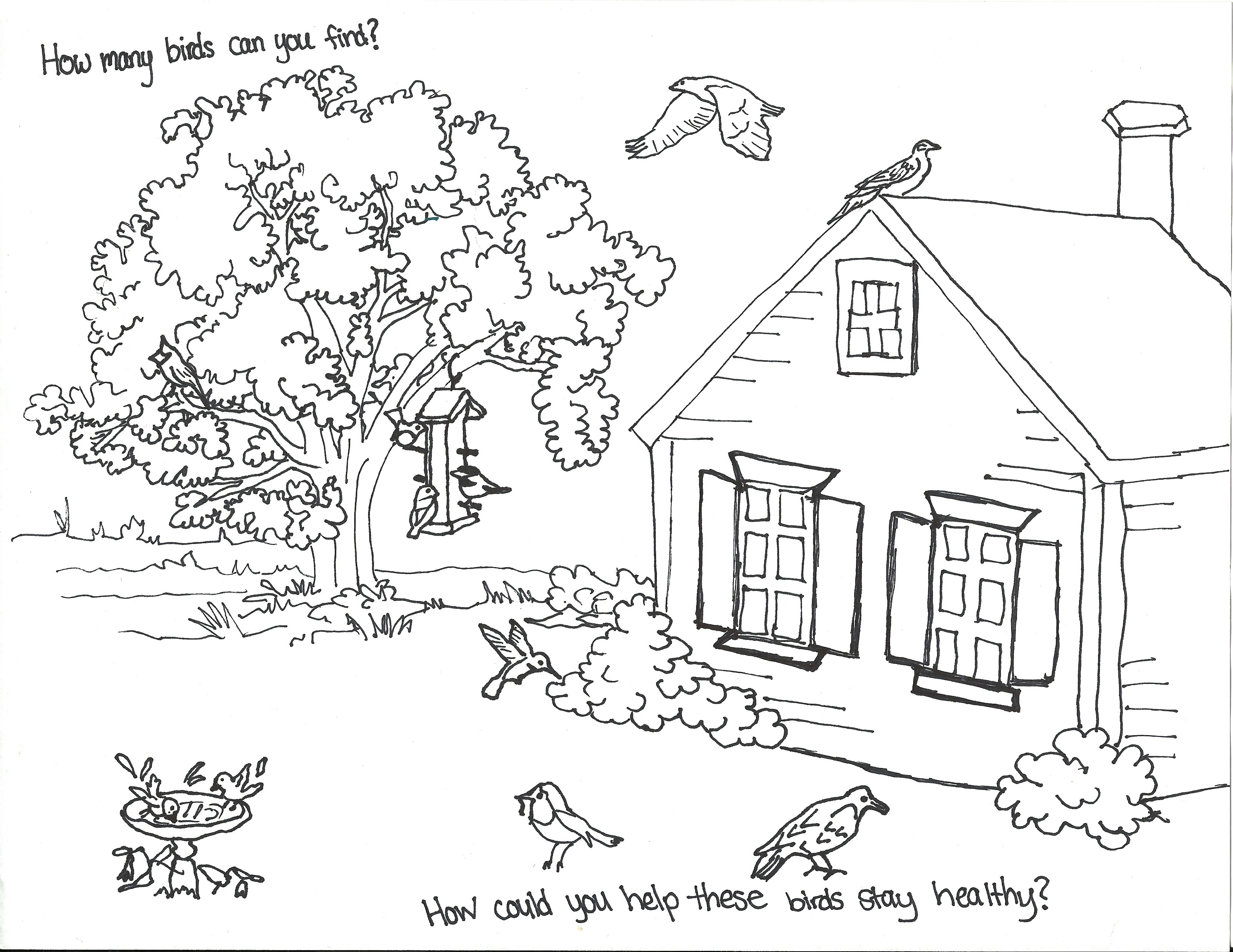 3300x2550 Back Yard Coloring Pages Park