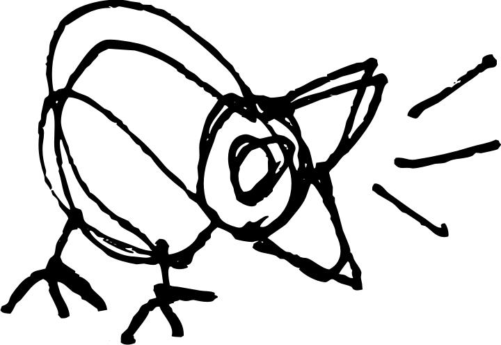 720x495 Cruise Ship Drummer! Making Bird Drawings