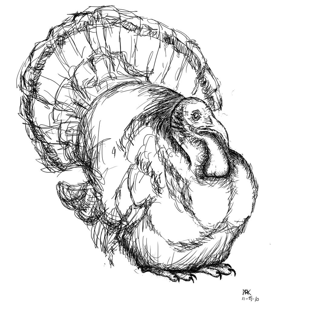 1024x1024 Drawing Of A Turkey Turkey 10,000 Bad Drawings