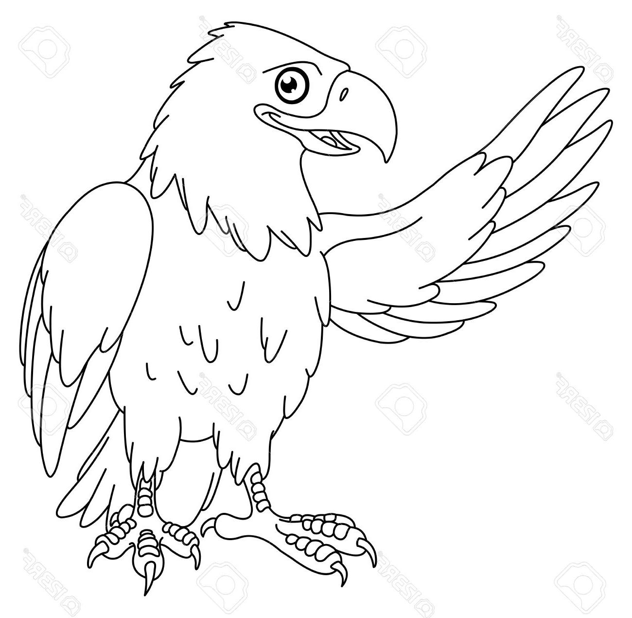 bald eagle drawing at getdrawings com