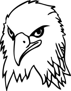 Bald Eagle Easy Drawing