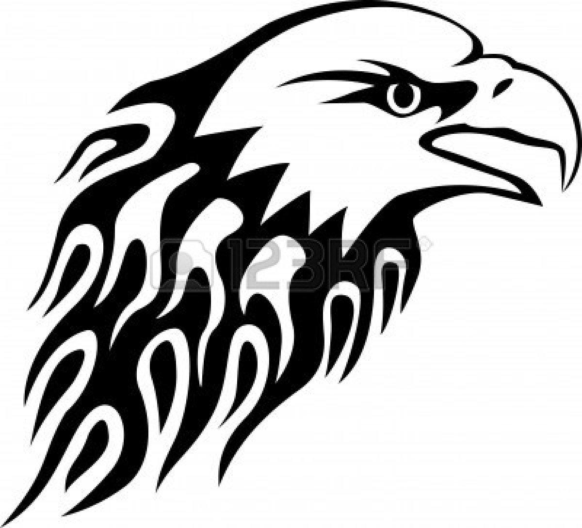 Evolution Of The Polish Eagle39s Design From 12th Century To Year Bald Eagle Photos Diagrams Topos Summitpost