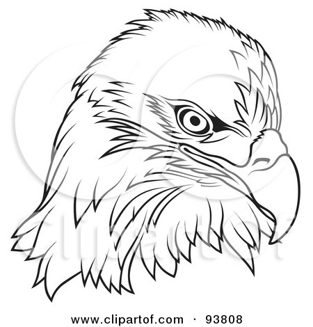 450x470 Black And White Bald Eagle Head Posters, Art Prints By Dero