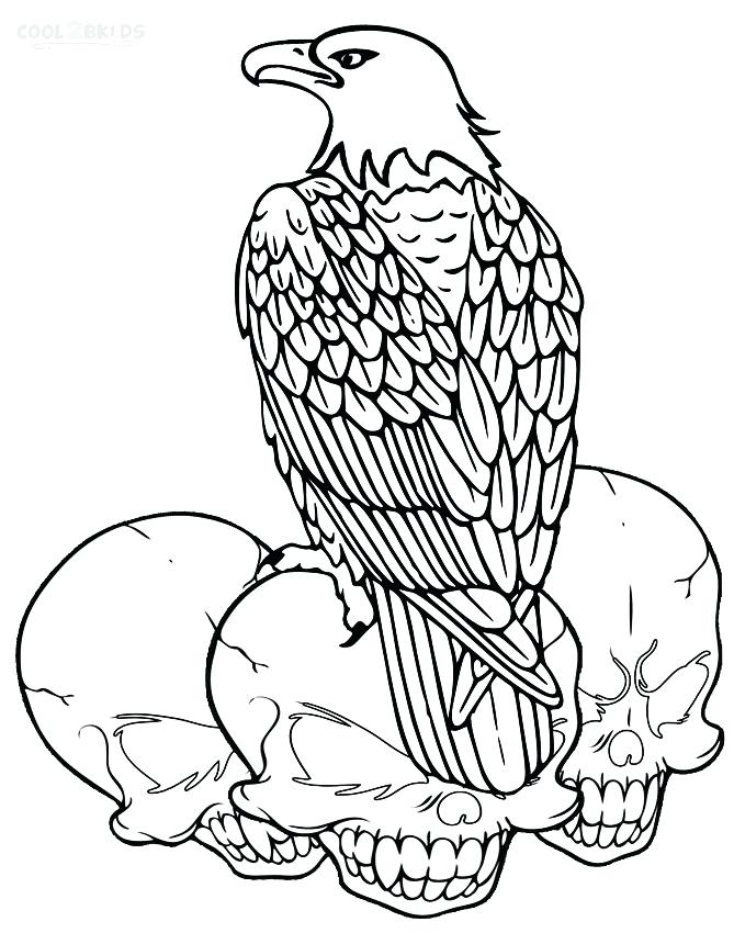 669x850 Bald Eagle Coloring Pages Bald Eagle Head Coloring Pages Free