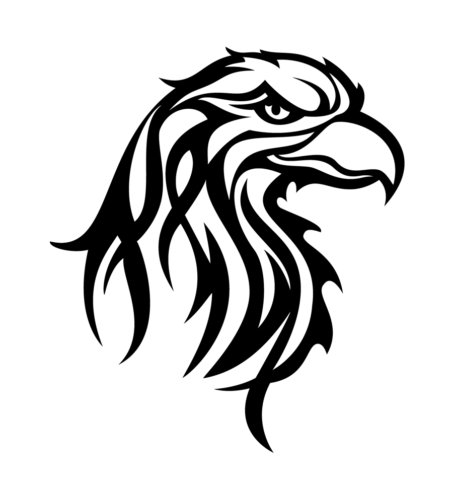 Bald Eagle Head Drawing at GetDrawings.com | Free for personal use ...
