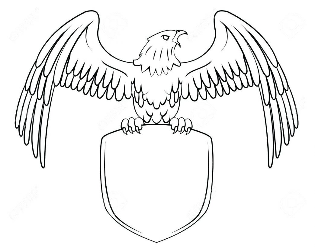 1043x833 Bald Eagle Coloring Pages Printable Drawn Cute Pencil And In Color