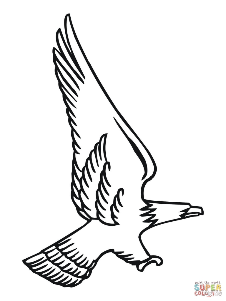 768x1024 Bald Eagle Drawings Bald Eagle Coloring Pages Free Coloring Pages
