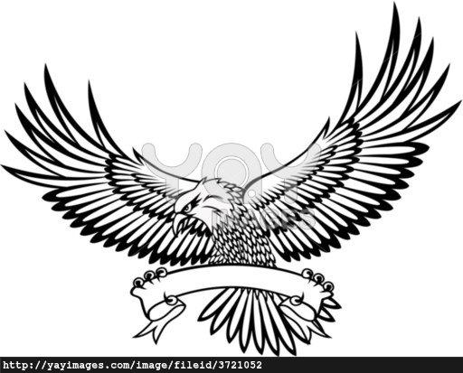 512x413 Drawn Brds American Eagle
