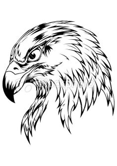 236x334 Eagle Drawing Did It!!!!!!! Eagle Drawing