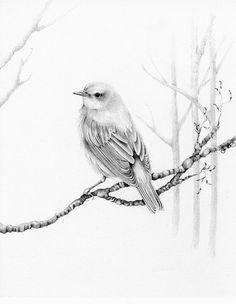236x304 Eagle Sketch