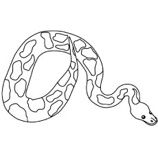 230x230 Top 25 Free Printable Snake Coloring Pages Online