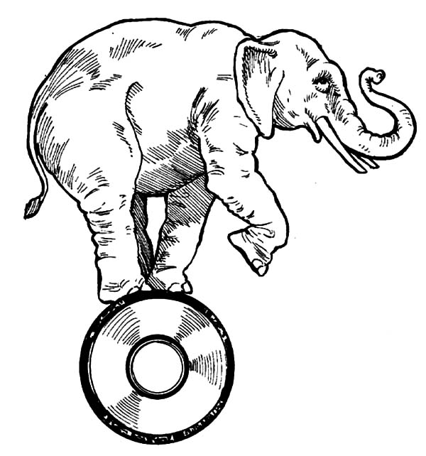600x642 Pencil Sketch Circus Elephant Coloring Pages Pencil Sketch Circus