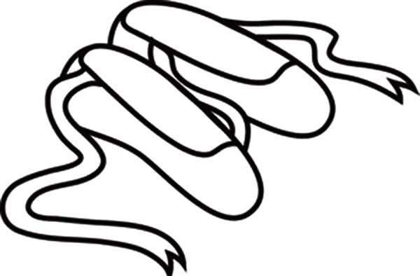 Ballet Pointe Shoes Drawing at GetDrawings   Free download