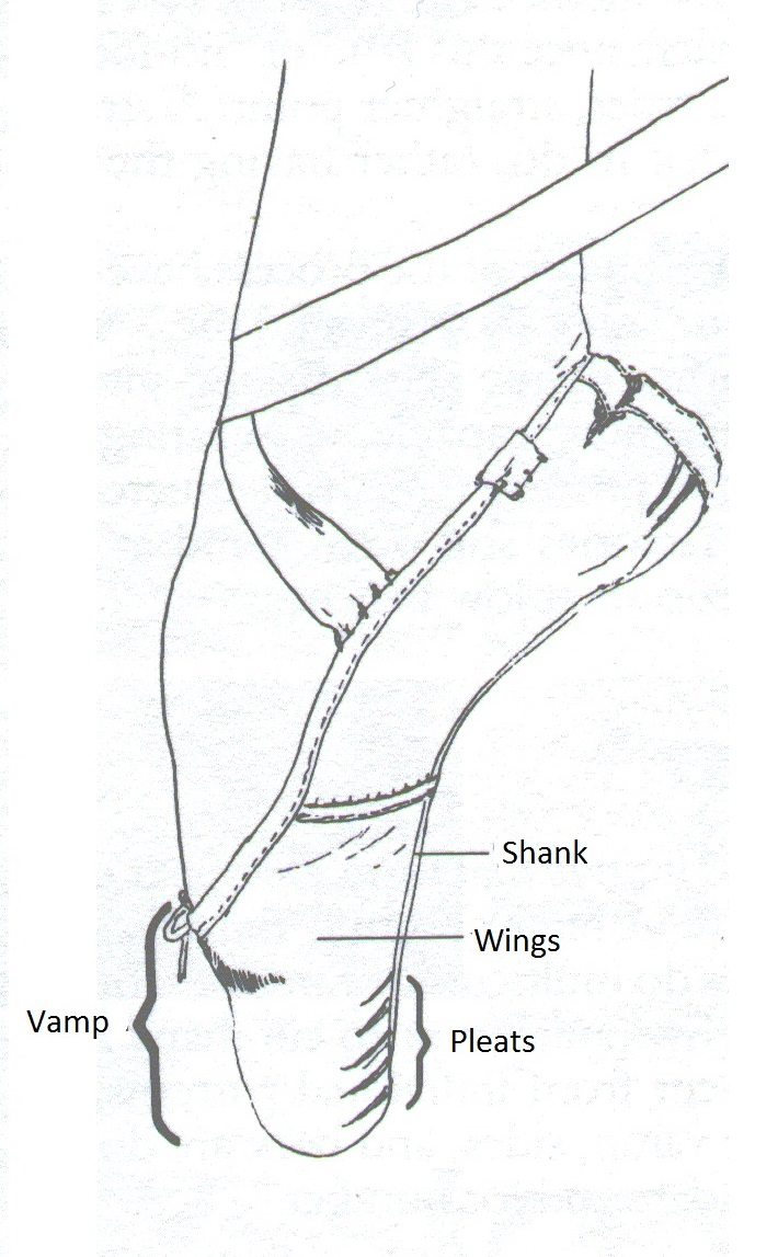 710x1147 A Diagram With Pointe Shoe's Parts Miss Ballet Pointe Shoe