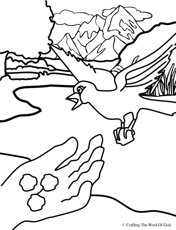 612x800 Ravens Coloring Pages Ravens Coloring Pages Ravens Coloring Pages