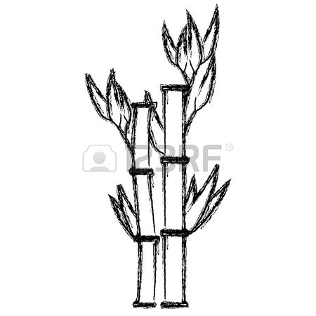 Bamboo Board Drawing