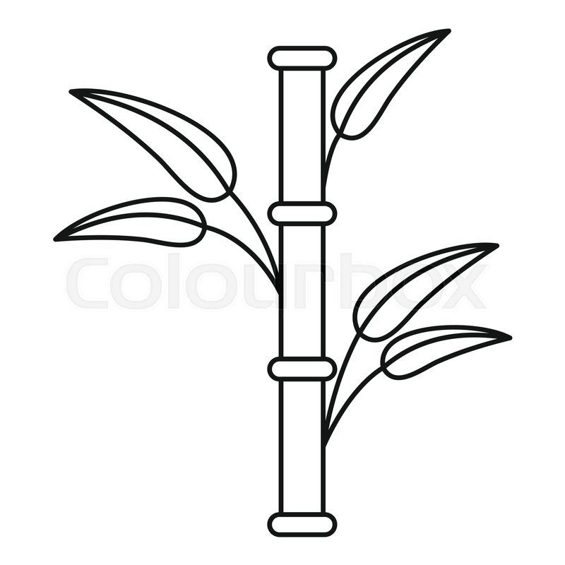 800x800 Bamboo Icon. Outline Illustration Of Bamboo Vector Icon For Web