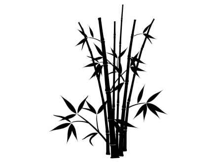 440x330 Easy Bamboo Drawing Bamboo Drawings Bing Images, Bamboo Plants