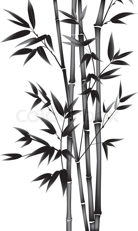 477x800 Ink Paint Bamboo Bush. Card With Black Bamboo Plants Isolated