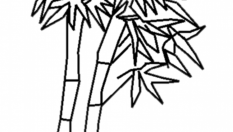 Bamboo Drawing at GetDrawings.com | Free for personal use Bamboo ...