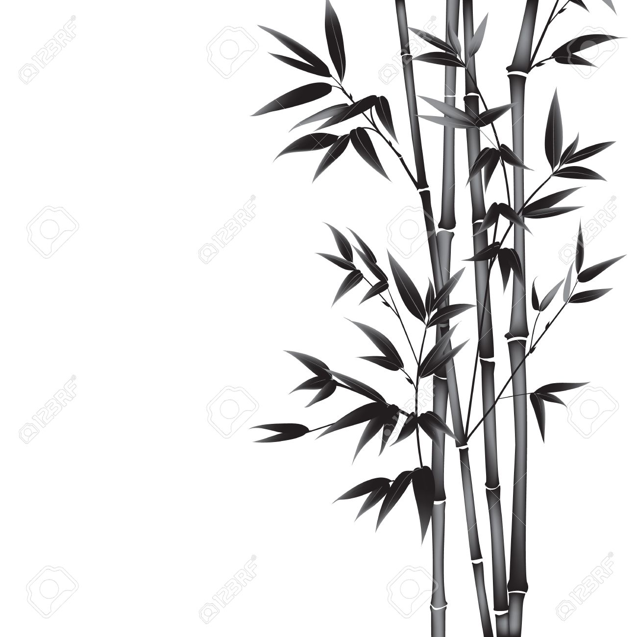 1300x1300 Ink Paint Bamboo Bush. Card With Black Bamboo Plants Isolated
