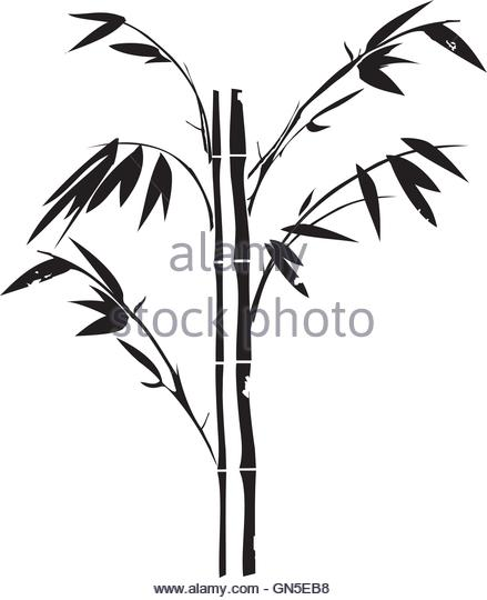 439x540 Bamboo Tree Silhouette Background Stock Photos Amp Bamboo Tree