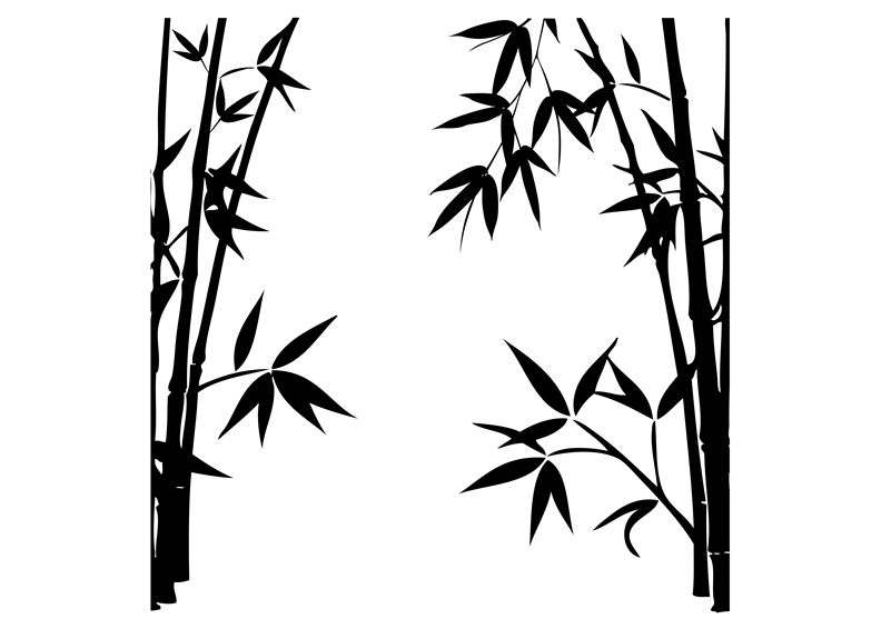 801x566 Glass Decals Bamboo 1 Art Without Boundaries